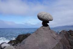Tai-Chi-Zuerich-Balance-Madeira-Porto-Moniz