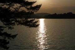 Tai-Chi-Zuerich-Stella-Matutina-Sonnenuntergang